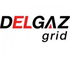 Inspector SSM/SU/PM (electricitate) in cadrul Delgaz Grid SA