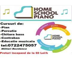 Lectii ,cursuri de contrabas,chitara bas,percutie,pian