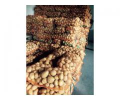 Cartofi de consum ambalat 15 Kg