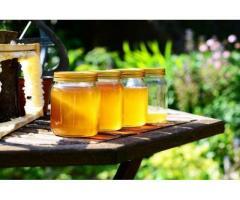 Miere poliflora direct de la apicultor en-gros, 100% naturala