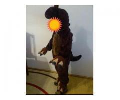 Vand Costum dinozaur 4-5 ani