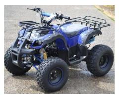OFERTA SPECIALA! ATV Honda Torino 125cc + Accesorii Cadou