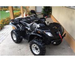 ATV Linhai 300 Aniversary 4x4 Limited Edition Muddy+Troliu